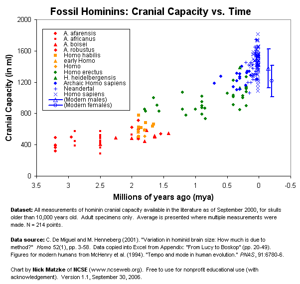 fossil_hominin_cranial_capacity_lg_v1-1.png